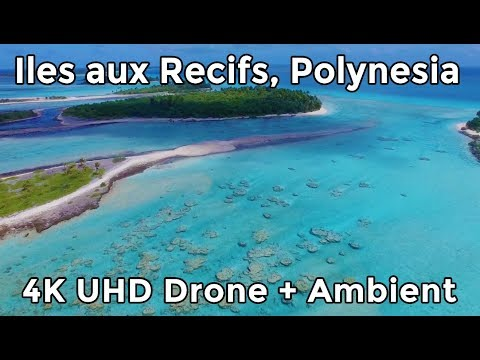 Polynesia - EXPLOSIVE landscape.  Îles aux Recifs by Drone - 4K UHD Relaxation + Ambient