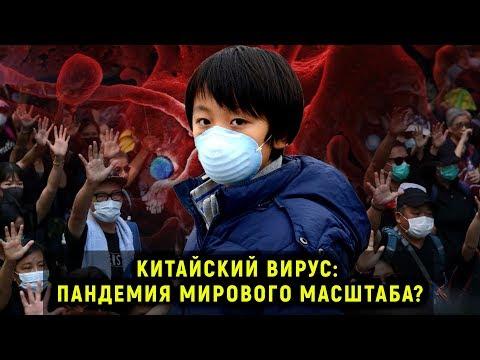 Кто «одарил» китайцев коронавирусом? И при чем тут американцы и летучие мыши?