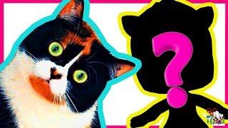 КОТ КУКИ из Сливки шоу ❤️  ООАК часть 1 / КОТИКИ / Как сделать// Muza Rukodeliya 🌺
