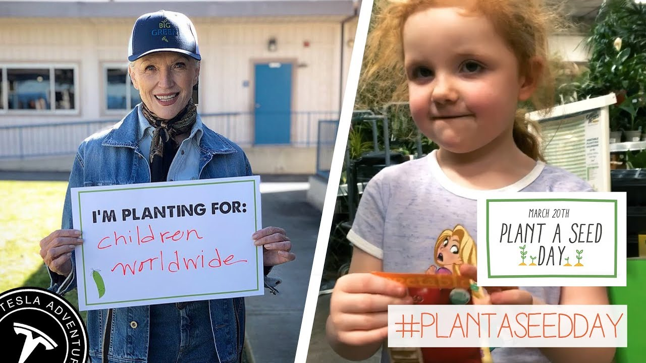 Plant a Seed Seed Day - March 20th - YouTube