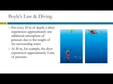 5.3 The Simple Gas Laws: Boyle's, Charles', & Avogadro's Laws
