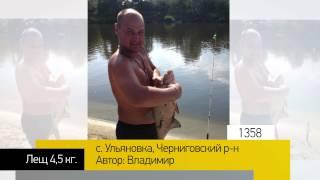 видео голубые озера черниговская область фото