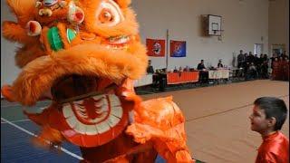 Китайский лев на соревнованиях по УШУ 24.12.2017, Донецк