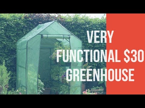 Small Walk In Greenhouse For Plant Starters