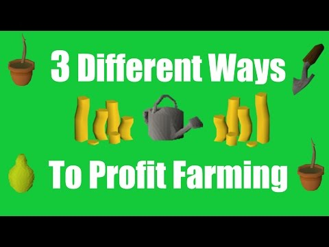 [OSRS] 3 Different Ways to Profit From Farming - Oldschool Runescape Money Making Method!