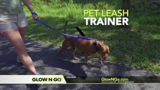 Glow N Go Leash/ Pet Leash Trainer