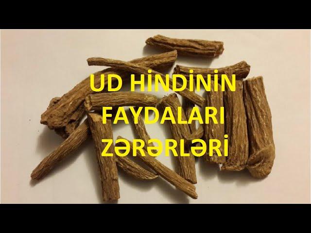 Ud Hindi Bitkisi Yagi Məcunu Faydalari Və əks Təsirləri Youtube