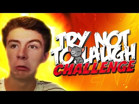TRY NOT TO LAUGH CHALLENGE ( Funny Cat Videos & Scott Sterling Reaction )