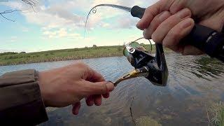 Аж не верится, что тут такие есть!! ЭТОТ МАЛЕНЬКИЙ ПРУД ТАИТ МНОГО СЮРПРИЗОВ!!! Рыбалка на спиннинг.