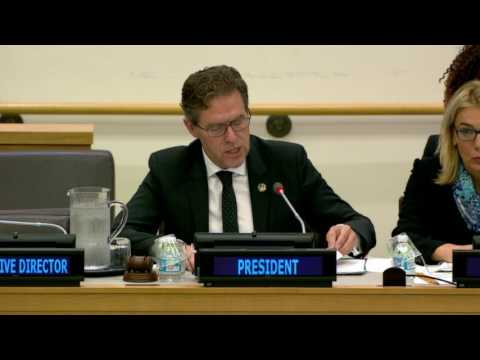 Ib Petersen, Permanent Representative of Denmark to the United Nations