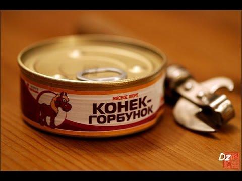 Конёк-Горбунок (Красная Плесень Сказка)