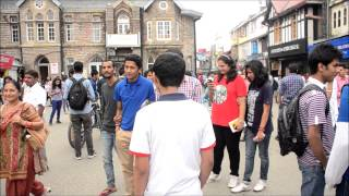 Freeze Mob - Shimla