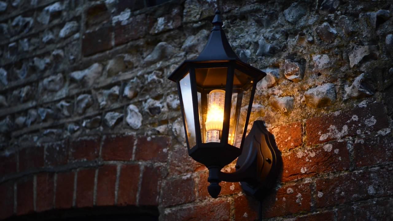 Tlc Light Bulbs