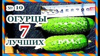 видео партенокарпические сорта огурцов для теплицы длительного плодоношения: описание + фото и отзывы