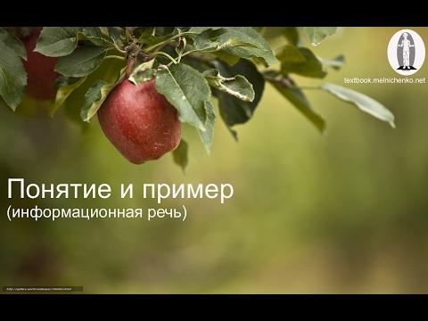 Понятие и пример (информационная речь)
