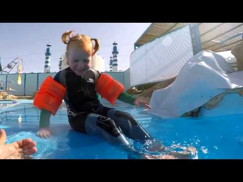Дельфинотерапия в Dolphin World Египет, Макади Бей
