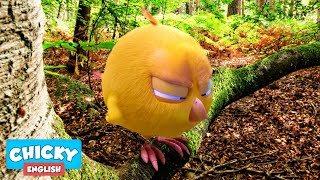 Wheres Chicky? Funny Chicky 2020   CHICKY IN THE FOREST  Chicky Cartoon in English for Kids