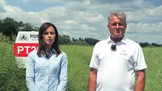 Demo Farma Grodkowice - gospodarstwo w którym uprawiany jest rzepak marki Pioneer