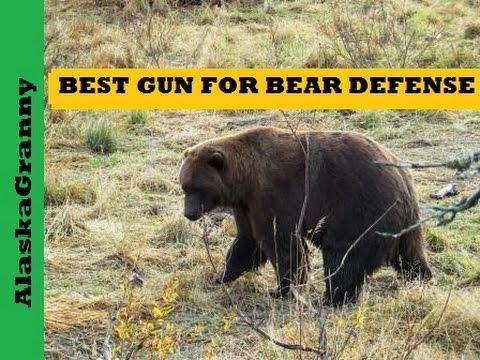 Best Gun For Bear Defense Gun Review