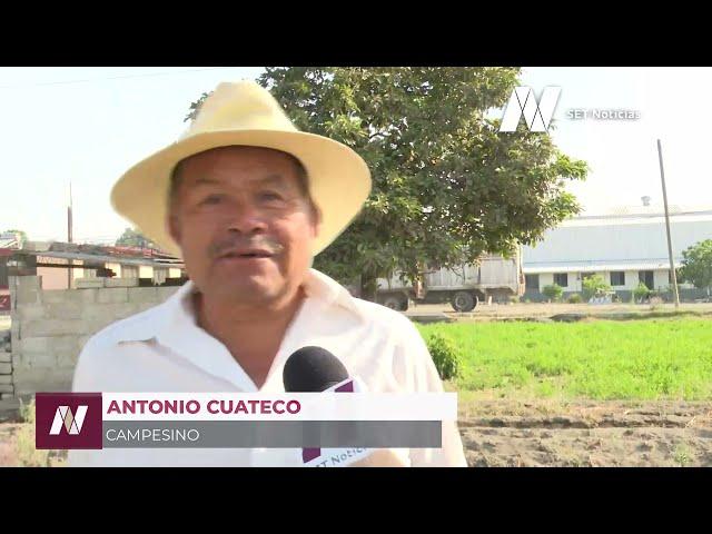 Las legumbres que acostumbras comer seguramente fueron cosechadas en San Luis Tehuiloyocan