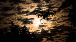 Echo & The Bunnymen - The Killing Moon (All Night Mix)