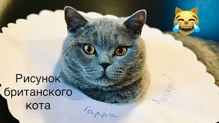 РИСУНОК КОТА но ЧТО ПОШЛО НЕ ТАК ?😹/ British cat Harry