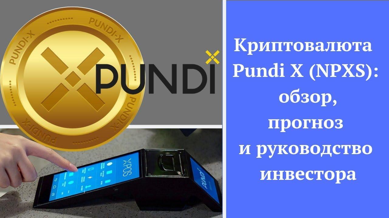 Криптовалюта Pundi X (NPXS): обзор, прогноз и руководство инвестора