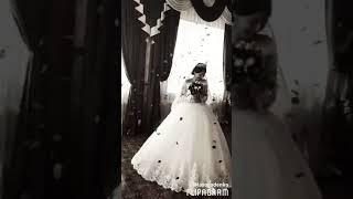 Цыганская свадьба Кристина и Давид
