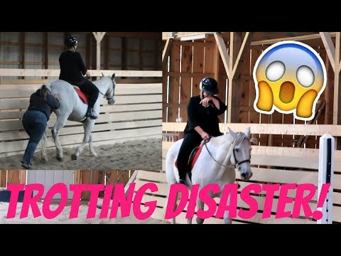 TROTTING DISASTER!! Day 255 09/13/17