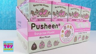 Baixar Pusheen Cat Holiday Cheer Series 5 Blind Box Plush Toy Review | PSToyReviews