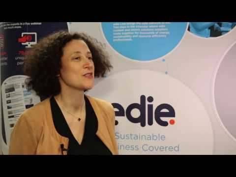 What makes an effective sustainability leader?