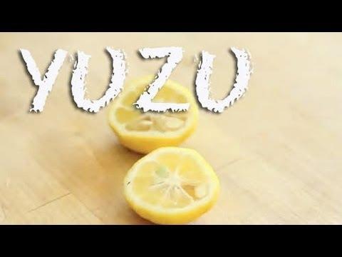 What is Yuzu? / Yuzu Sour Cocktail Recipe