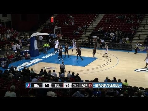 Mario Little - Highlights of 2013-14 NBA D-League Season