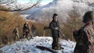 Pheasant shooting. The beaters shoot.