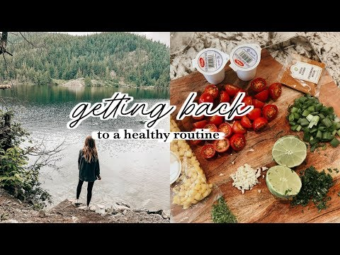 Getting Back Into A Healthy Routine | Gym, Meals, Cleaning, Errands Vlog