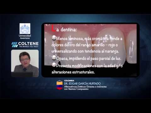 246 3rd Coltene School E-Forum - Colombia - Alternativas Estéticas Directas e Indirectas