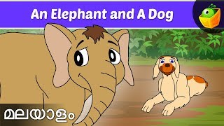 Elephant And The Dog - Jataka Tales In Malayalam - Animation/Cartoon Stories For Kids