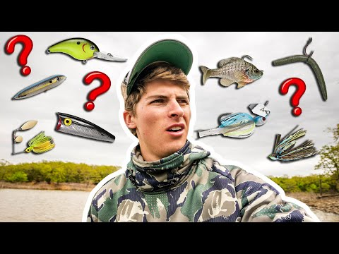 How To PICK The RIGHT LURES For Bass Fishing!