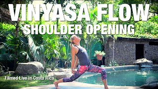Shoulder Opening Yoga Class - 45 Minute - Five Parks Yoga