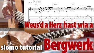 Bergwerk Fendrich solo guitar tabs TUTORIAL slomo lesson