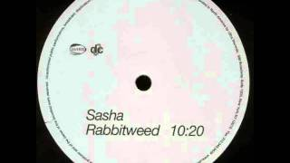 Sasha - Rabbitweed