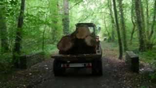 Harvesting Timber In The Irish Woodlands
