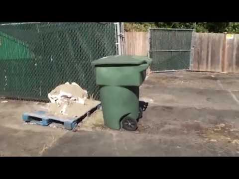 Solomon Christian School | Garbage Behind My House | June 12, 2015
