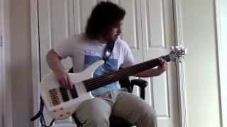 Disillusion - A Day by the Lake (fretless bass cover)
