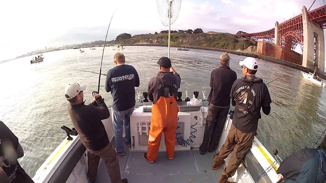 2015 07 19 rock fish lingcod striped bass mola mola for Sf bay striper fishing report