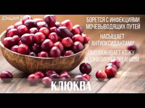 ТОП-15 самых полезных продуктов для организма