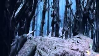Властелин колец гоблинская версия (приколы)