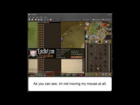 Runescape Auto Miner And Banker! BOT Watch In HD!!!!!