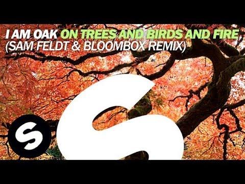 I Am Oak - On Trees and Birds and Fire (Sam Feldt & Bloombox Remix)