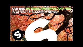 Watch music video: Sam Feldt - On Trees and Birds and Fire